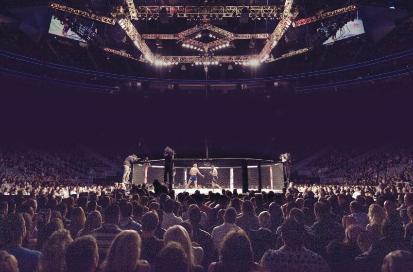 UFC 267